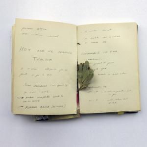 Aitana / stand-in Notebook
